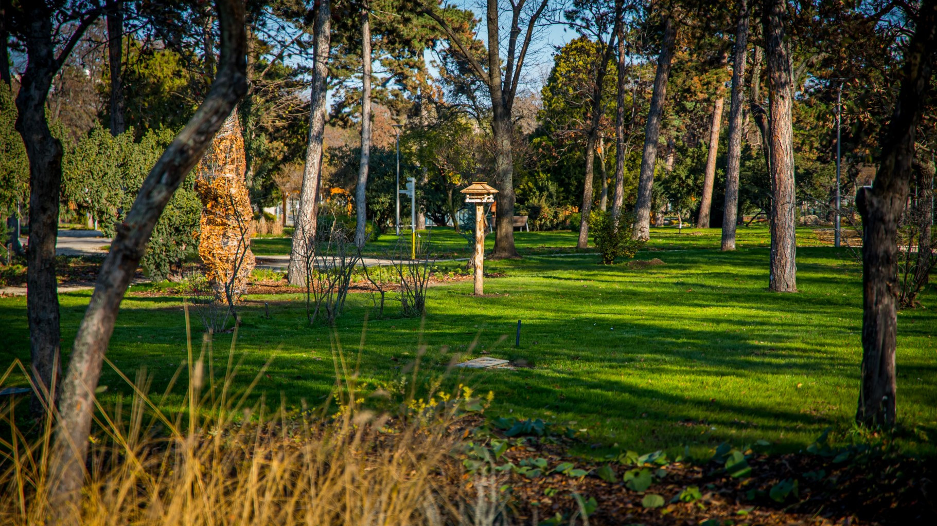 Mihály Mőcsényi Botanical Garden